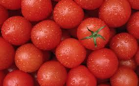 tomatoes for potency